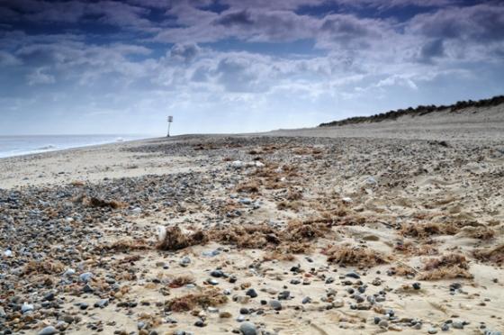 cromer-beach-1