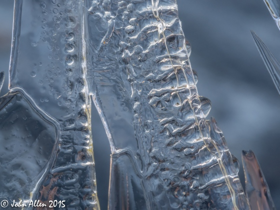 Ice Patterns-3