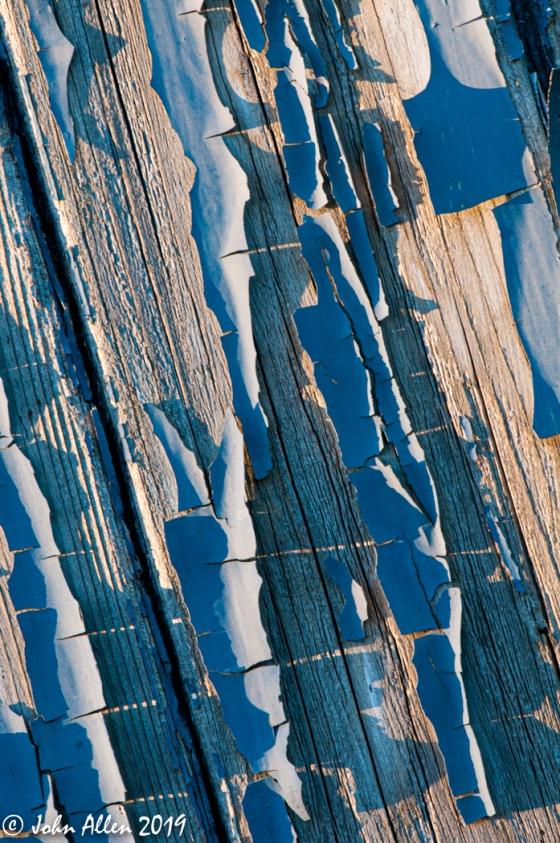 Texture by John Allen-2
