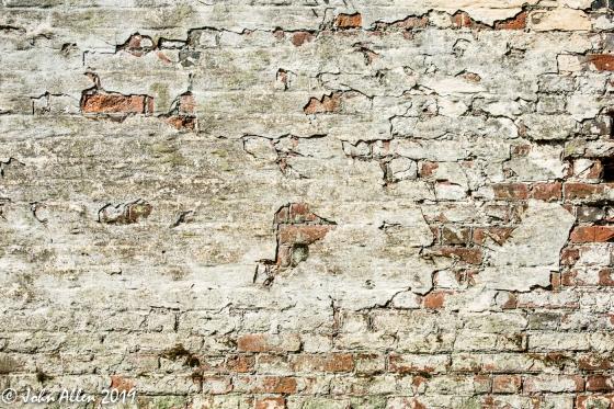 Texture by John Allen-3