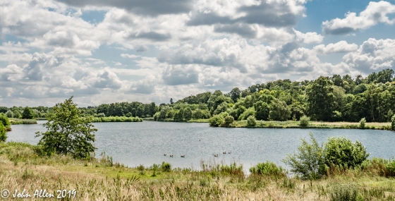 Panshanger Country Park by John Allen-4